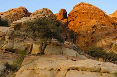 Petra rocks
